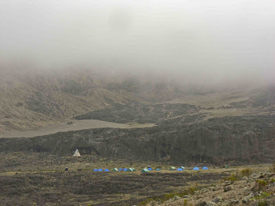 Moir Hut Campsite