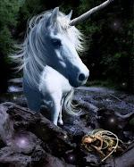 Dicen ... que el unicornio te concede un deseo, si logras verlo.