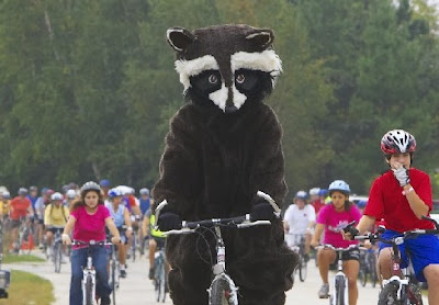 Image of a badger on a bicycle