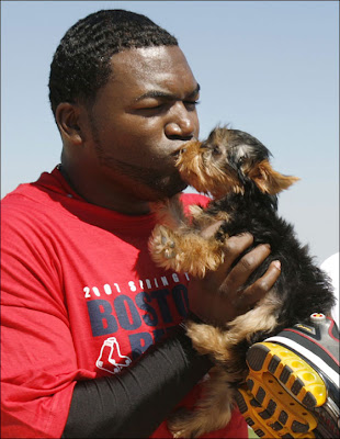 Image of David Big Papi Ortiz kissing his dog Mikey during spring training 2007 in Ft. Myers Florida