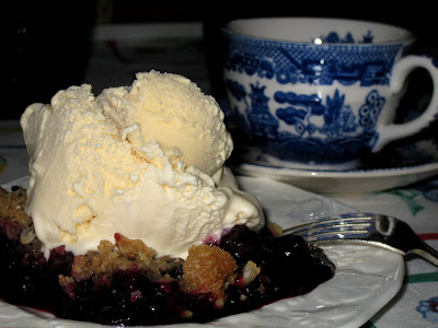 Blueberry Crumble with vanilla ice cream