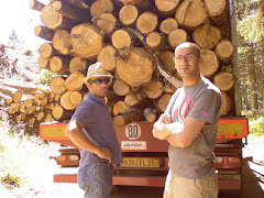 op-ont-hout