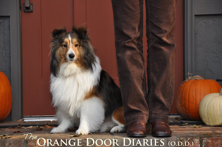 The Orange Door Diaries