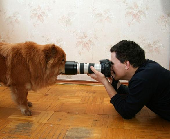 Cool Photos of Photographers Seen On www.coolpicturegallery.us
