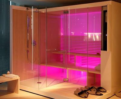 Modern Futuristic Sauna Design Pictures-Minimalist Home Designs ...