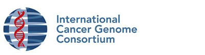 International Cancer Genoma Consortium