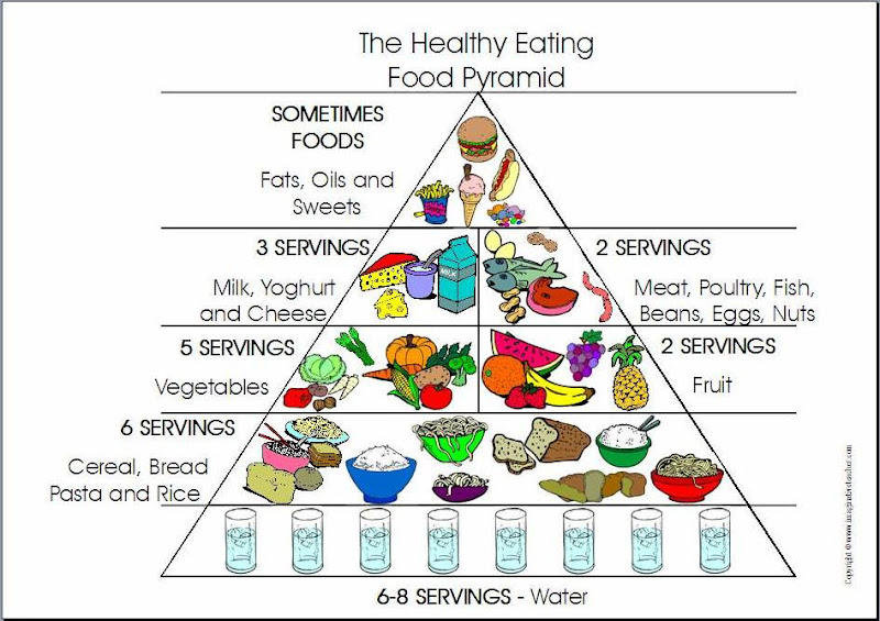 essay healthy eating pyramid The food pyramid guide allows about 120-220 grams of carbohydrates a day, which are roughly six to eleven servings [tags: exploratory essays research papers] 807 words (23 pages) strong essays: the canada food guide essay - to be healthy you must have four unsettles ingredients.
