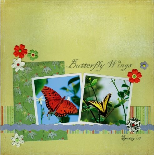 [Butterfly+Wings-1.jpe]