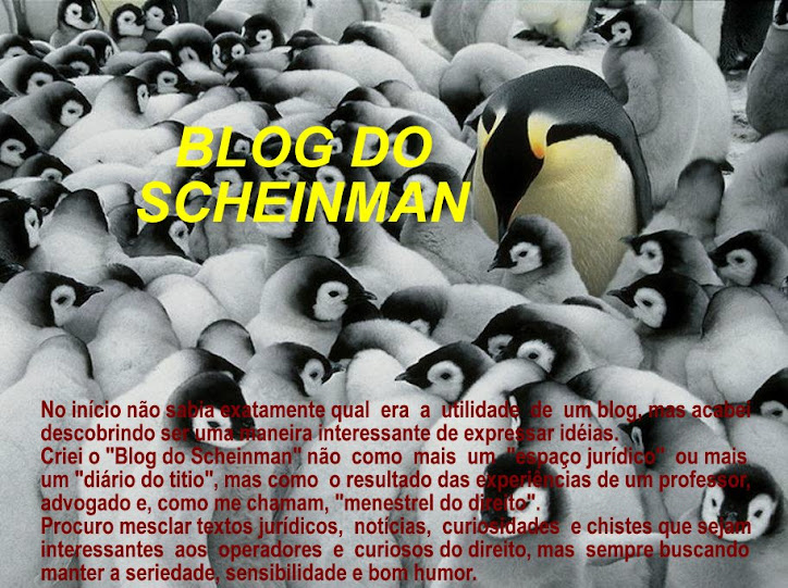 Blog do Scheinman