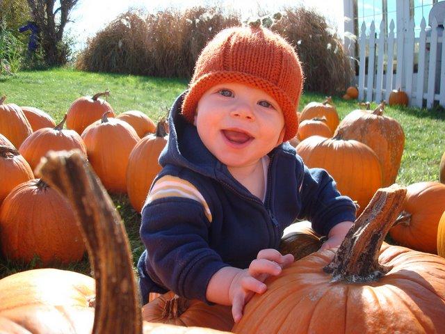 [Miles+Pumpkin]
