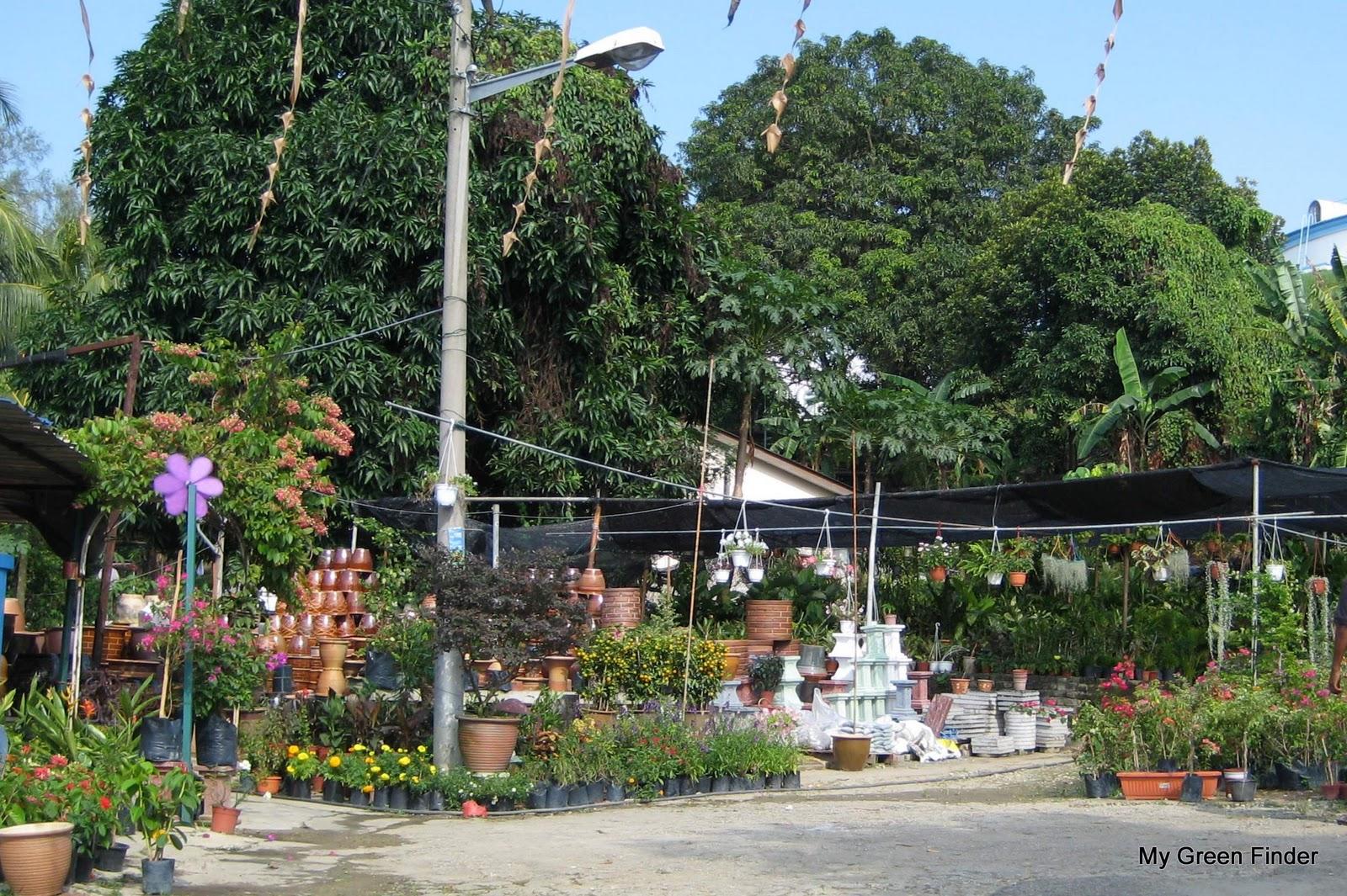 Sri Andalas Nursery