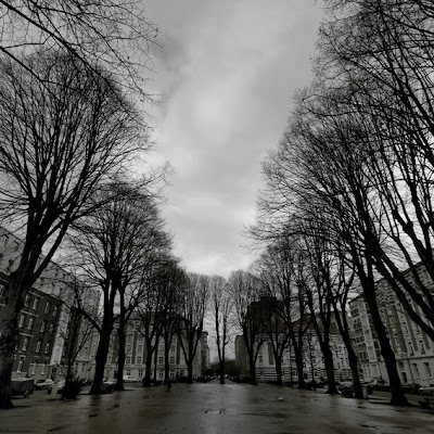 photo de Liège, place bordée d'arbre, avenue reine Elisabeth, quartier des Vennes, photo © dominique houcmant