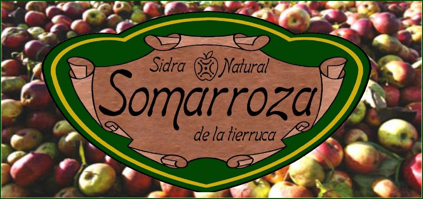 Sidra Somarroza