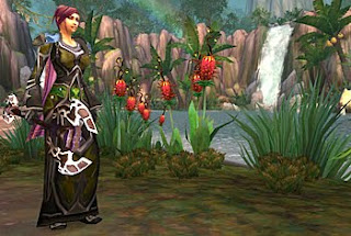 world of warcraft girl before pond