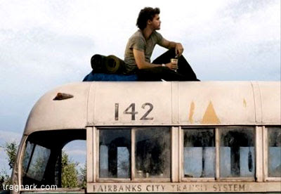 good thesis for into the wild