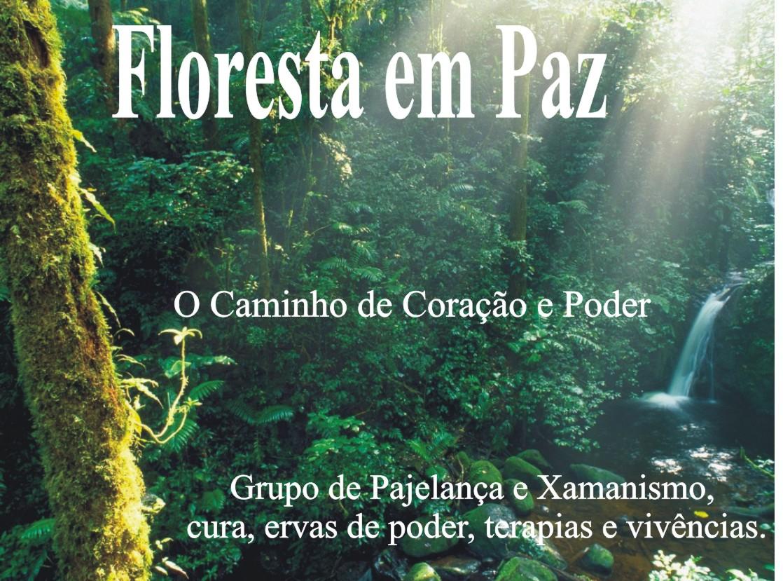 Floresta em Paz ... Caminho do Coração e Poder