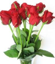 seindah mawar berduri