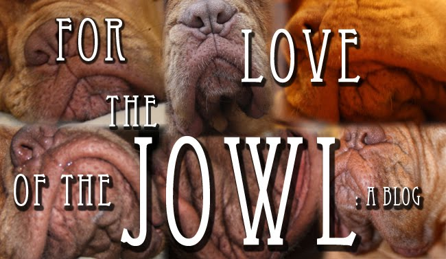 For the Love of the Jowl: a Blog