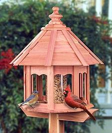 Nis aves escoger un comedero para p jaros - Comedero de pajaros ...