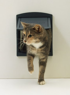 Cat flap uPVC door UK