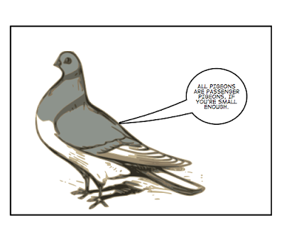All pigeons are passenger pigeons, if you're small enough.