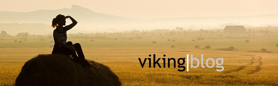 vikingblog