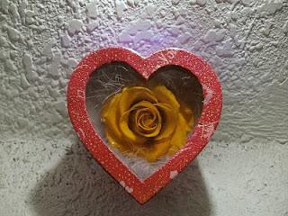 Shop hoa hồng bất tử-rose4ushop - 23