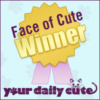 "Noll was ""The Face of Cute""..."