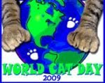 Happy World Cat Day to All