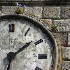 El tiempo en Kotor