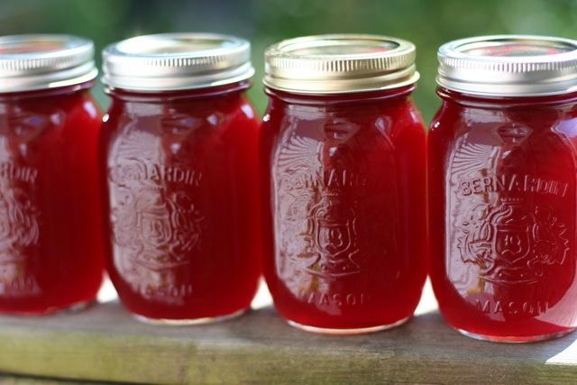 V e g a n D a d: Strawberry Syrup