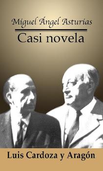 CASI NOVELA