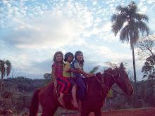 iwy pytá (tierra roja)