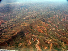 LA DESFORESTACION CREA POSIBLES DESASTRE NATURALES