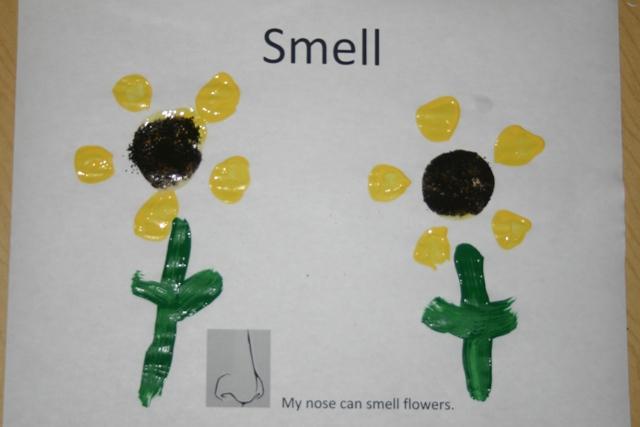 Five Senses Smell on Sense Smell Worksheets For Preschool