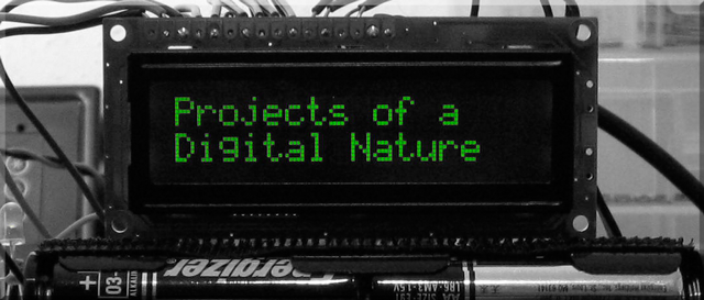 Projects of a Digital Nature