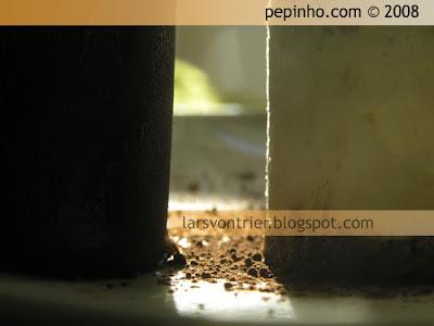 Tronquitos de chocolate y tiramisú