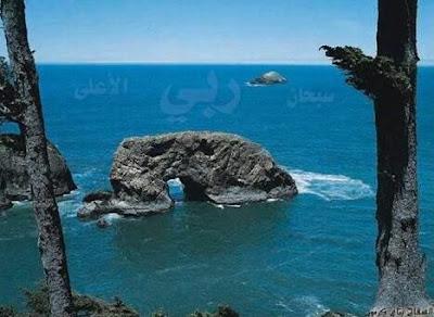 http://1.bp.blogspot.com/_k-7O5Ef89ec/SpmXmE8pFFI/AAAAAAAAAB8/AXyug4njvOA/s400/stone+in+sajida.jpg