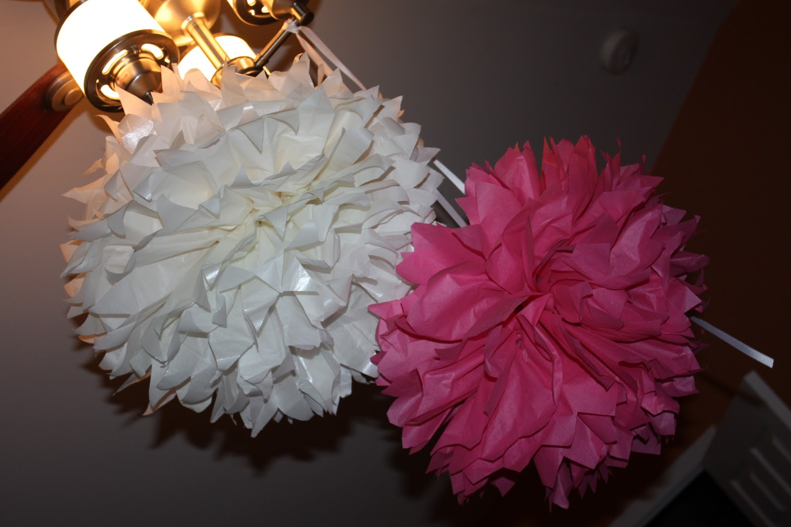 Saved by grace maintained by coffee gigantic tissue paper flower no they are not going to live on my ceiling fan but i didnt want to crush them while i made more mightylinksfo