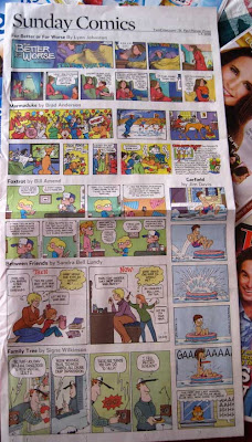 Sunday funnies from the Pioneer Press with six different strips crammed in