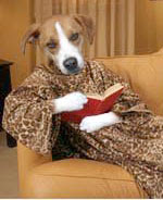 Brown and white mutt dog head on a human body, wrapped in a leopard print snuggy, lounging on a couch with a book