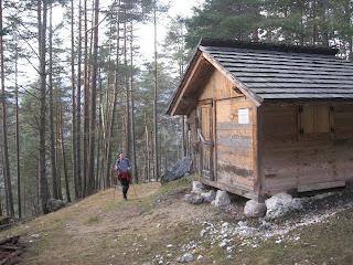 Una solitaria casetta fra i pini