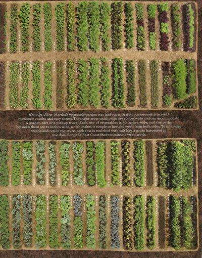 Martha's garden