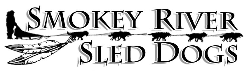 smokey river sleddogs