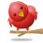 Coo? Chirp? Tweet!