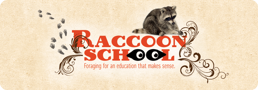 Raccoon School