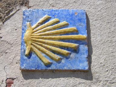 Origen e Historia del Camino de Santiago