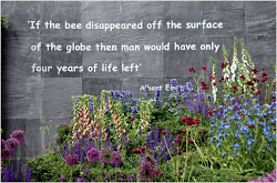 """If the bee disappeared..."" A. Einstein"