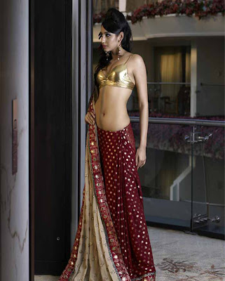 Ragini ass Show very hot gallery in saree