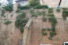Alc. Iner. Ciudad de Siena - Italia